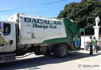 ¿Vives en Bacalar y tienes cacharros en tu patio? ¡Aprovecha esta campaña! - sipse.com