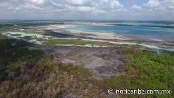 Denuncian que incendios en Bacalar son provocados por ejidatarios de Juan Sarabia para cambiar el uso de suelo - Noticaribe