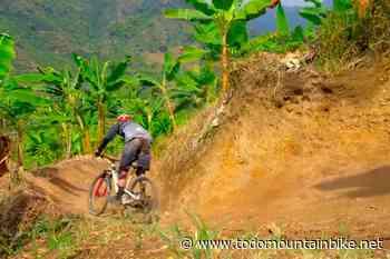 Rodando entre plantaciones de café en Colombia con Finn Iles y Rob Warner - TodoMountainBike