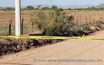 """Armados hacen """"justicia"""" y matan a presunto violador en Nuevo Casas Grandes - El Heraldo de Chihuahua"""