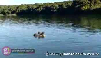 Santa Terezinha de Itaipu: Corpo é encontrado em putrefação no Lago de Itaipu - Guia Medianeira
