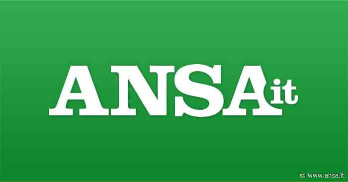Open fiber al via per 2mila case a Gemona - Tlc - Agenzia ANSA