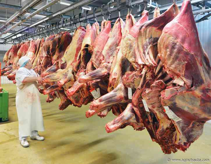 Corona-Test: Vion unterbricht die Produktion in Bad Bramstedt - agrarheute.com