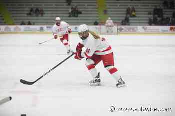 Amy Curlew of Happy Valley-Goose Bay drafted by NWHL's Toronto squad - SaltWire Network