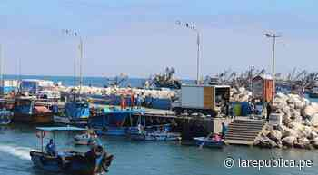 Moquegua: Pescadores artesanales de Ilo reiniciarán actividades el 11 de mayo - LaRepública.pe