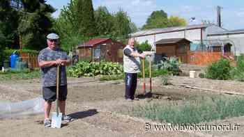 Libercourt: malgré le confinement, les Amis du jardin peuvent pratiquer leur passion! - La Voix du Nord