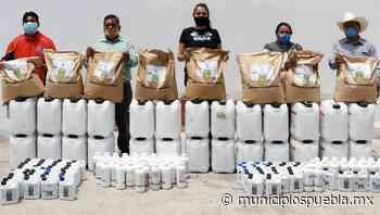Angélica Alvarado fortalece el campo de Huejotzingo - Municipios Puebla