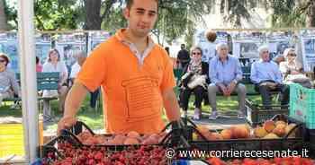 Coronavirus, a Longiano salta la Sagra della ciliegia - Corriere Cesenate