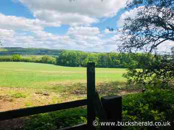 Aylesbury Vale nature scenes will be changed forever by HS2 - Bucks Herald