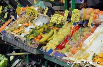 San Giuliano Milanese: riaprono i mercati all'aperto - 7giorni