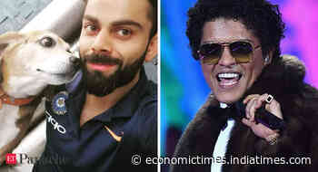 Virat Kohli's pet dog passes away; trending hashtag leaves Bruno Mars fans in a frenzy - Economic Times
