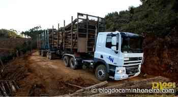 Expresso Nepomuceno abre 50 vagas para Motoristas Carreteiros em Juatuba-MG - Blog do Caminhoneiro