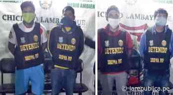 Lambayeque: Policía detienen a traficantes de madera en Mochumí - LaRepública.pe