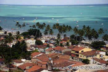 Oposição afirma que prefeitura de Maragogi não distribuiu cestas básicas à população - Alagoas 24 Horas