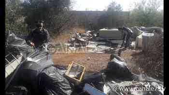 Adelfia e Sannicandro di Bari- Sequestrate 6 discariche abusive di rifiuti speciali e pericolosi - Canale7