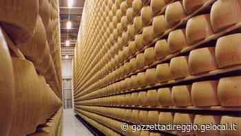 Cavriago, ruba forma di Parmigiano Reggiano: denunciato magazziniere - La Gazzetta di Reggio