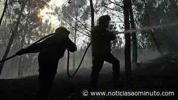 Incêndio em Perafita, Vila Real, em fase de resolução - Notícias ao Minuto