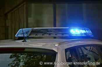 Polizeibericht aus Weil der Stadt: Polizist mit rotem Fahrrad beworfen - Leonberger Kreiszeitung - Leonberger Kreiszeitung
