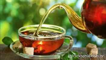 Para que serve e como fazer chá de pitanga? - Arial