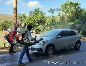 Nuevas medidas sanitarias en Oxkutzcab a partir de hoy - El Diario de Yucatán