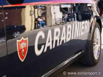 Belpasso: topo d'appartamenti acrobata arrestato in flagranza - siciliareport.it