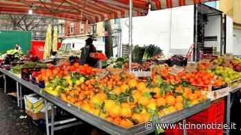 Marcallo con Casone: domani riparte il mercato - Ticino Notizie