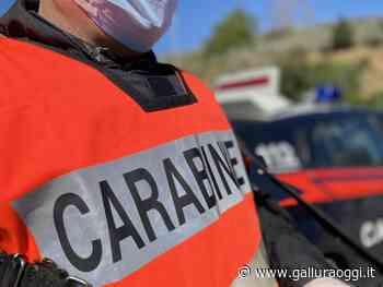 Spaccio di metadone a Olbia, nei guai una 50enne di Calangianus - Gallura Oggi