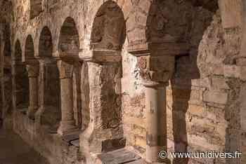 Le Mystère de la crypte Saint-Aignan Rue Neuve Saint-Aignan 29 mai 2020 - Unidivers