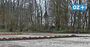 Renovierter Fußballplatz in Putbus soll für Zulauf im Verein sorgen - Ostsee Zeitung