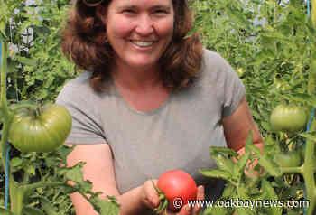 Growing the South Island: Robin Tunnicliffe, Sea Bluff Farm – Oak Bay News - Oak Bay News