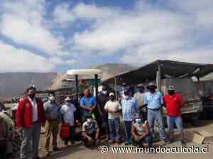 Caletas de Tarapacá son equipadas con tractores y grúas horquillas para optimizar faenas de desembarque - Mundo Acuícola