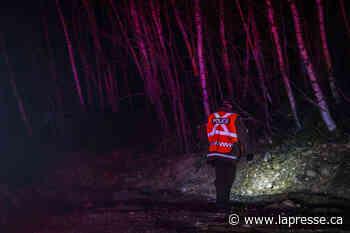 Disparue en forêt, une enfant de 9 ans est retrouvée saine et sauve