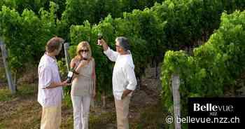Bordeaux-Weine: Der französischen Region droht der Absturz - Neue Zürcher Zeitung