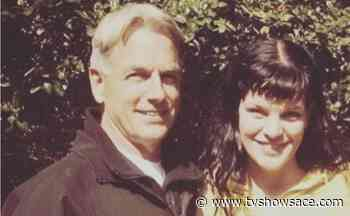 Pauley Perrette: Broke Healed Her, After NCIS Mark Harmon Issues - TV Shows Ace