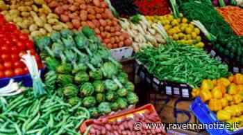 Riapre il mercato settimanale a Cotignola: venderà solo i prodotti alimentari - ravennanotizie.it
