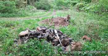 Usingen: Erneut illegal Müll abgeladen - Usinger Anzeiger