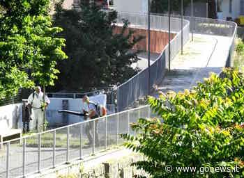 Iniziati i tagli dell'erba in giardini e parchi di Quarrata - gonews
