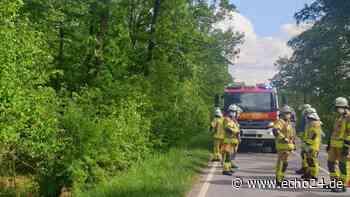 Auto rauscht Böschung hinunter - L1101 bei Brackenheim voll gesperrt - echo24.de