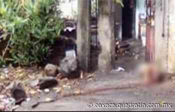 Asesinan a joven en Puerto Escondido - Quadratín Oaxaca