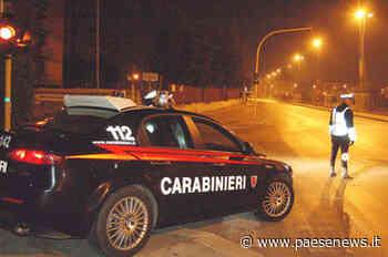 Pietramelara / Caivano – Ruba furgone all'impresa Cantiello, tenta cavallo di ritorno: arrestato 38enne - Paesenews