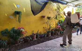 Jojutla y Zacatepec tienen más incidencia de dengue - El Sol de Cuernavaca