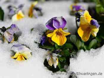 Noch nie so wenig Schnee wie in vergangener Saison - inSüdthüringen