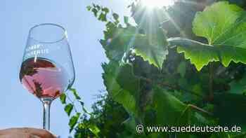 Nachfrage nach deutschem Wein in Krise deutlich gestiegen - Süddeutsche Zeitung