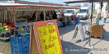 Nach Corona - Wochenmarkt in Zossen ab Donnerstag wieder offen, Kraut- und Rübenmarkt startet - Märkische Allgemeine