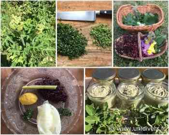 Stage cueillette & cuisine de plantes sauvages Ferme du Buisson 26 septembre 2020 - Unidivers