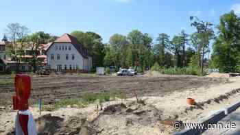 Wohnquartier in Beelitz-Heilstätten: Umstrittene Baumfällungen in der geplanten Waldsiedlung - Potsdam-Mittelmark - Startseite - Potsdamer Neueste Nachrichten