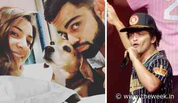 'RIP Bruno' trends after Virat Kohli's dog passes away, Bruno Mars fans panic - THE WEEK