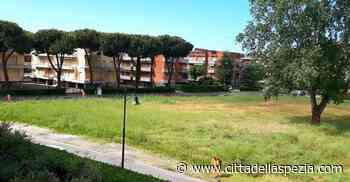Al via il taglio dell'erba nei quartieri di Sarzana - Città della Spezia