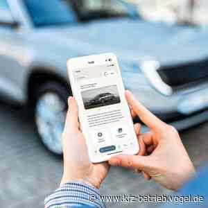 Manheim Express: Cox Automotive launcht Auktions-Plattform - kfz-betrieb