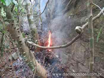 Causa provável de focos de incêndio no Morro Agudo é a estiagem - Diário de Canoas